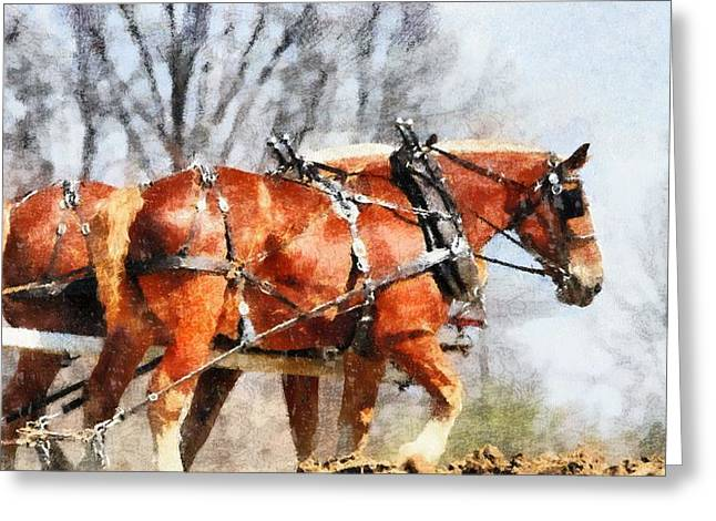 Work Horses In The Field Greeting Card by Dan Sproul