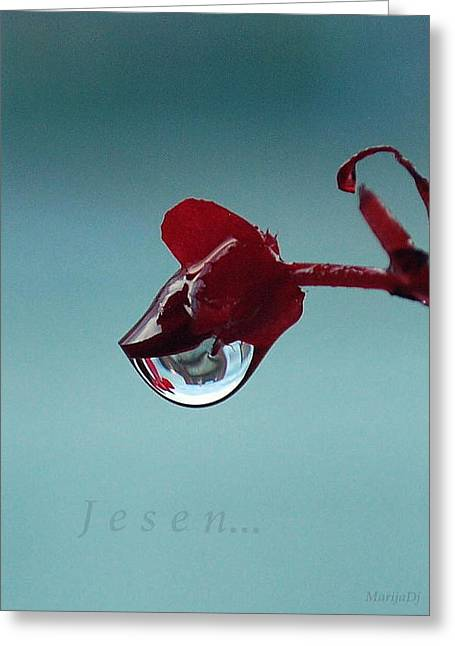 World In A Drop Greeting Card by Marija Djedovic
