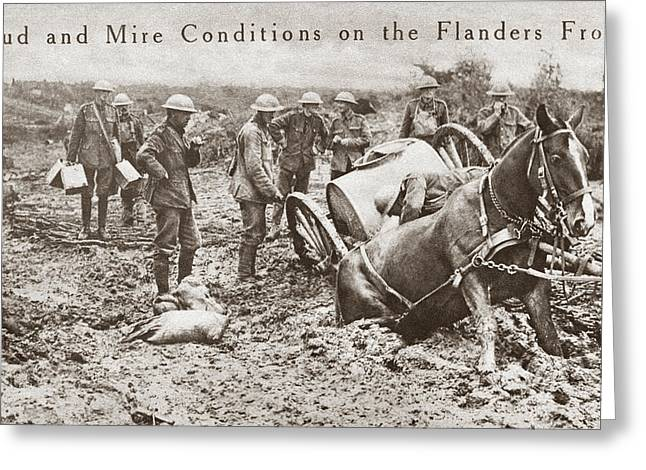 World War I Flanders Greeting Card
