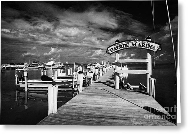 World Wide Sportsman Bayside Marina Islamorada Florida Keys Usa Greeting Card by Joe Fox