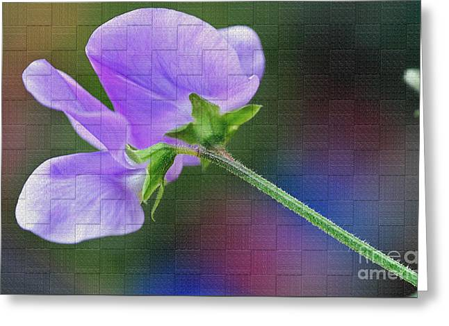 Woven Floral Greeting Card by Kaye Menner