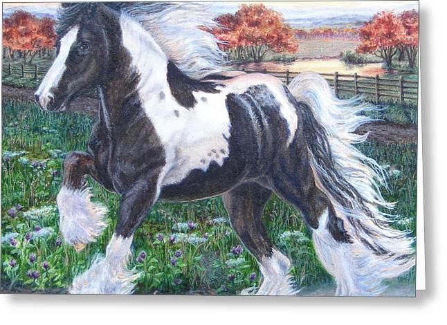 Wr Sundance Gypsy Horse Greeting Card