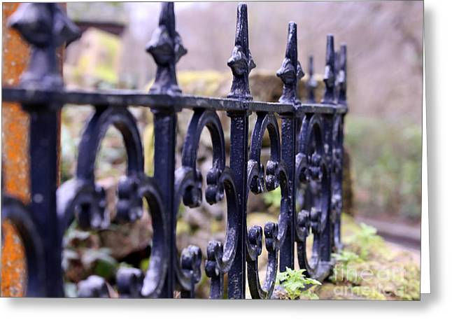 Wrought Iron Fence 1 Greeting Card by Kate Purdy