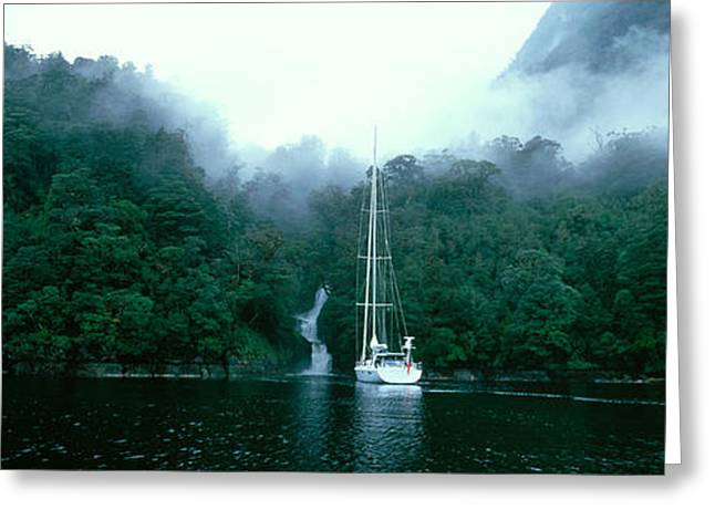 Yacht In The Ocean, Fiordland National Greeting Card by Panoramic Images