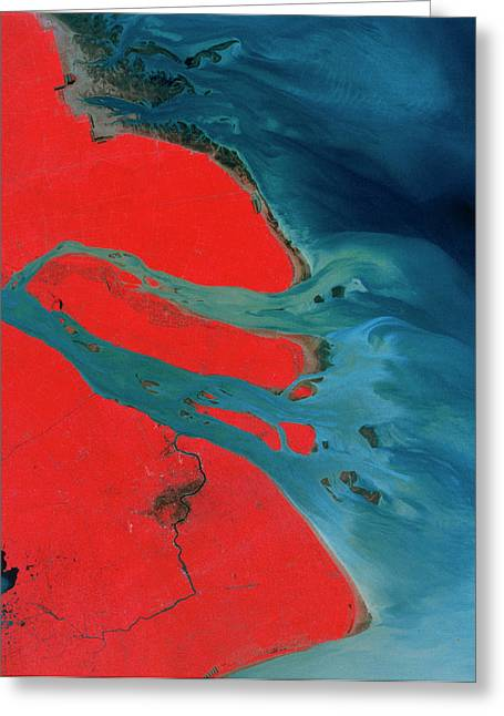 Yangtze Delta And Shangai Greeting Card by Mda Information Systems/science Photo Library