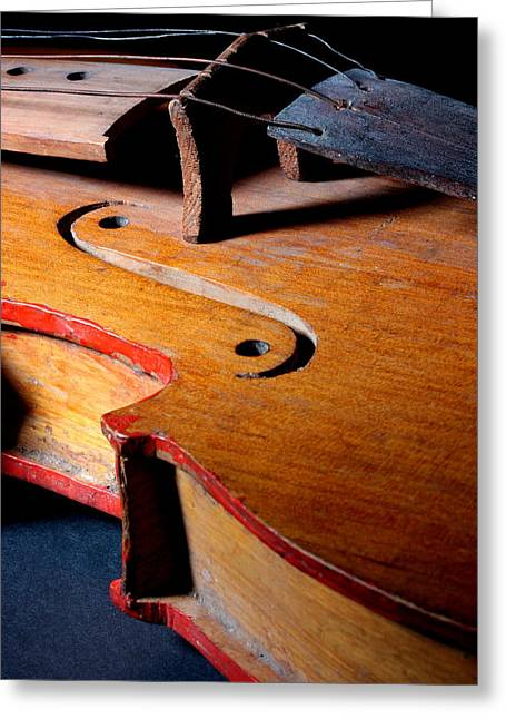 Greeting Card featuring the photograph Yaqui Fiddle by Joe Kozlowski