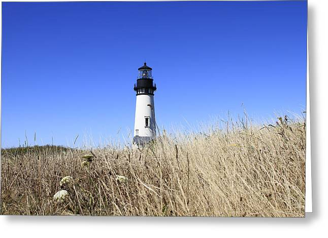 Yaquina Head Lighthouse Greeting Card by David Gn