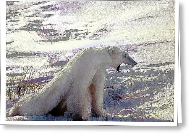 Yawning Polar Bear Greeting Card