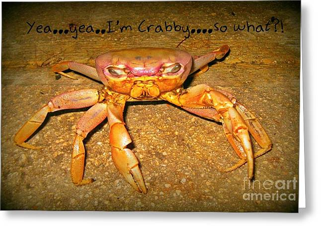 Yea I Am Crabby So What Greeting Card by John Malone