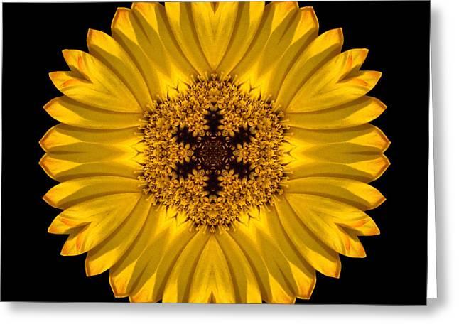 Yellow African Daisy Flower Mandala Greeting Card
