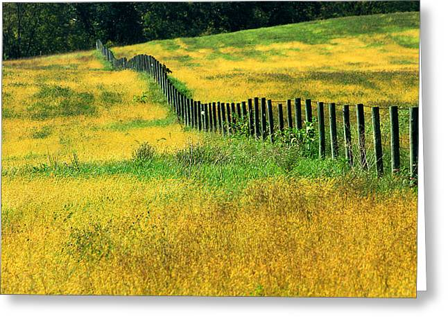 Yellow Afternoon Greeting Card by Emanuel Tanjala