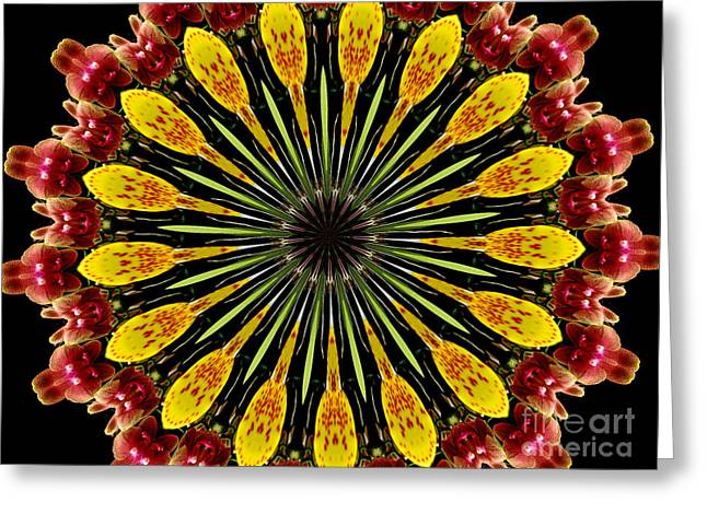 Yellow And Apricot Orchids Kaleidoscope Greeting Card by Rose Santuci-Sofranko