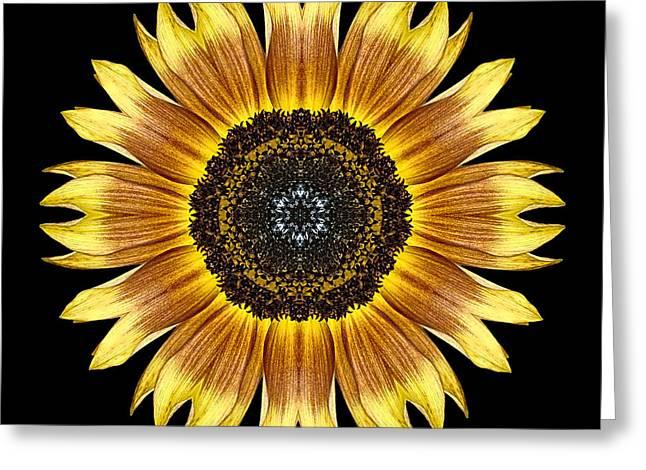 Yellow And Brown Sunflower Flower Mandala Greeting Card