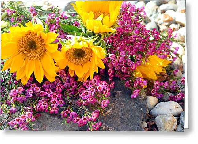 Greeting Card featuring the photograph Yellow And Pink by Lula Adams