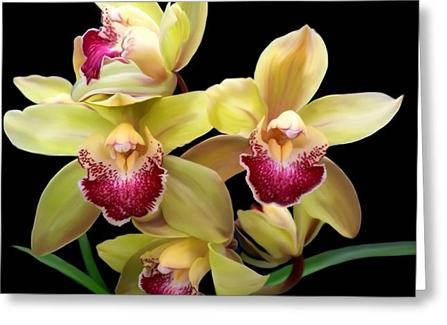 Yellow And Pink Orchids Greeting Card