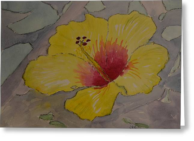 Yellow And Red Hibiscus Greeting Card by James Cox