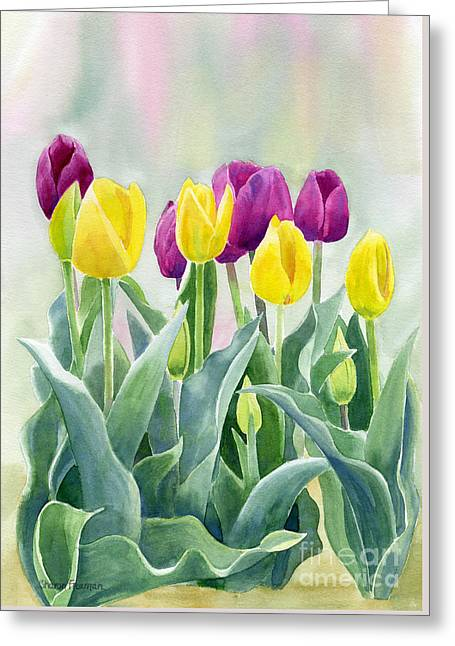 Yellow And Red Violet Tulips With Background Greeting Card by Sharon Freeman