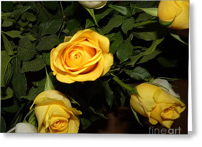 Yellow And White Roses Greeting Card