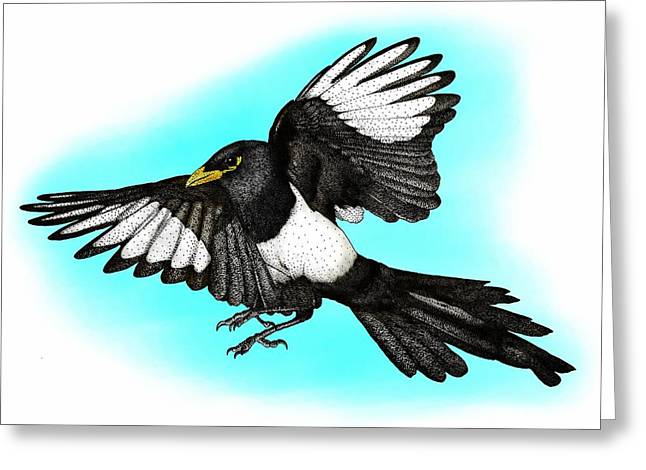 Yellow Billed Magpie Greeting Card by Roger Hall