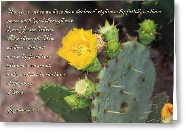 Yellow Blossom On Cactus Romans  Greeting Card