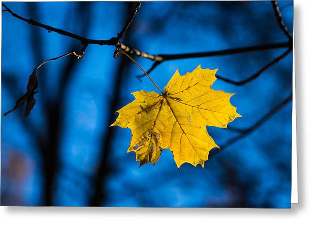 Yellow Blues - Featured 3 Greeting Card by Alexander Senin