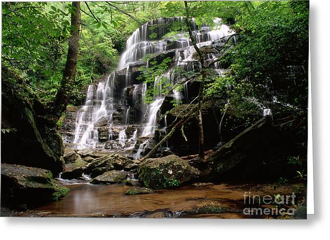 Yellow Branch Falls Greeting Card