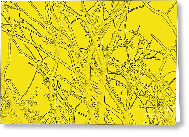 Yellow Branches Greeting Card by Carol Lynch