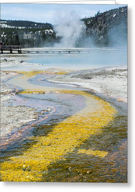 Yellowstone Brick Road Greeting Card