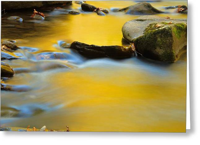 Yellow Cascades Greeting Card by Dan Sproul