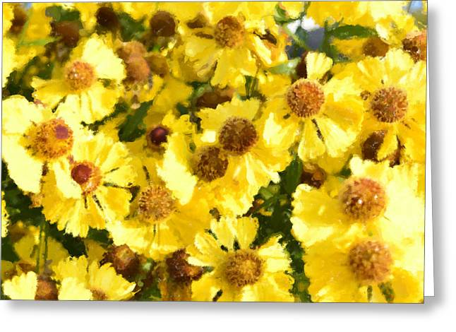Yellow Daisy Greeting Card by Tommytechno Sweden