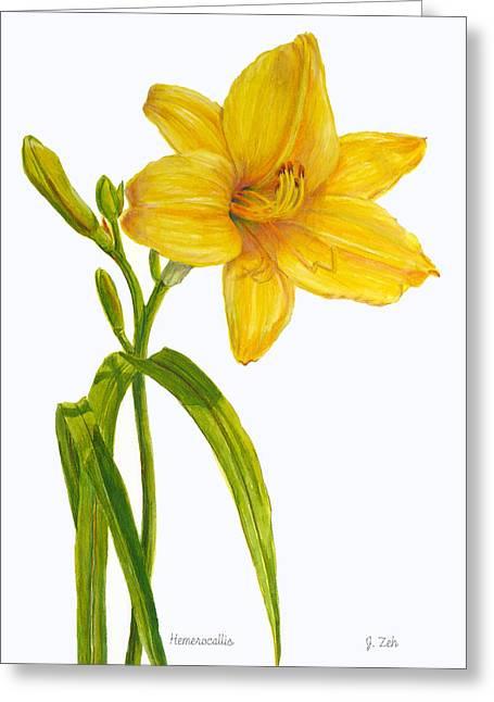 Yellow Daylily - Hemerocallis Greeting Card by Janet  Zeh