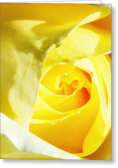 Yellow Diamond Rose Palm Springs Greeting Card by William Dey