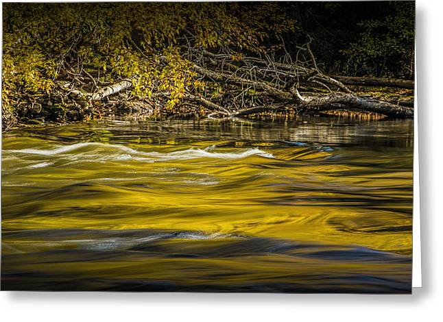 Yellow Fall Reflections On The Thornapple River Greeting Card by Randall Nyhof