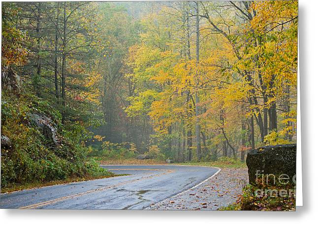 Yellow Fall Roadside Scenic Greeting Card