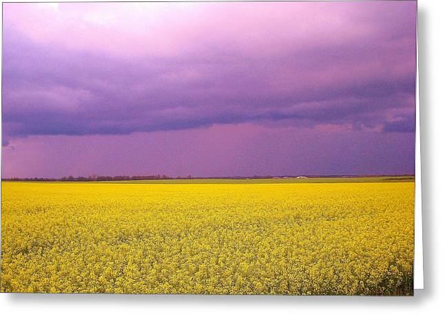 Yellow Field Purple Sky Greeting Card