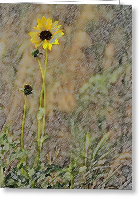 Yellow Flower Greeting Card by Joyce  Wasser