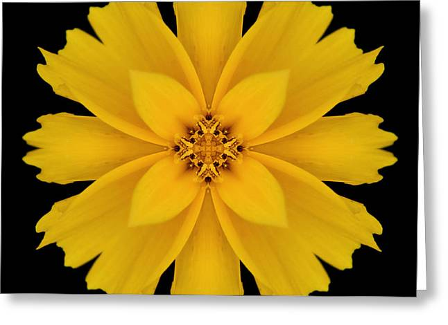 Yellow Flower Kaleidoscope Abstract Greeting Card by Don Johnson