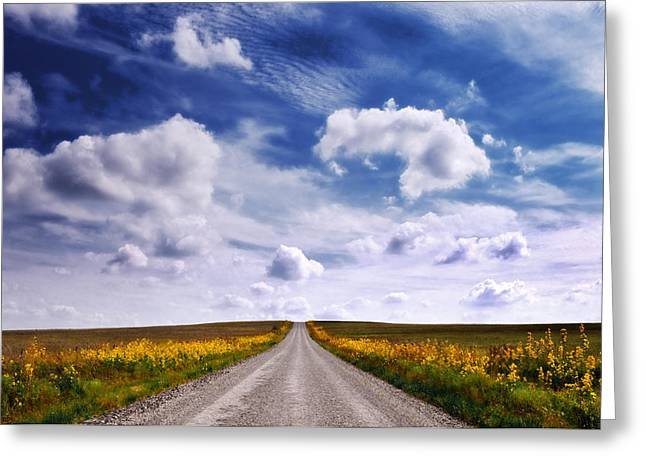 Yellow Flower Road Greeting Card