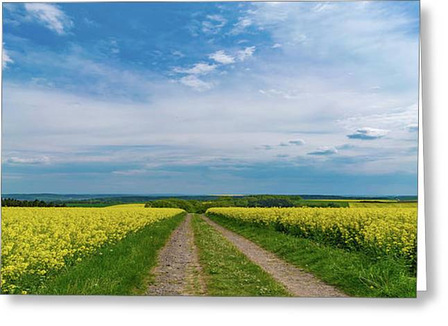 Yellow Flowers In A Field Greeting Card by Wladimir Bulgar/science Photo Library