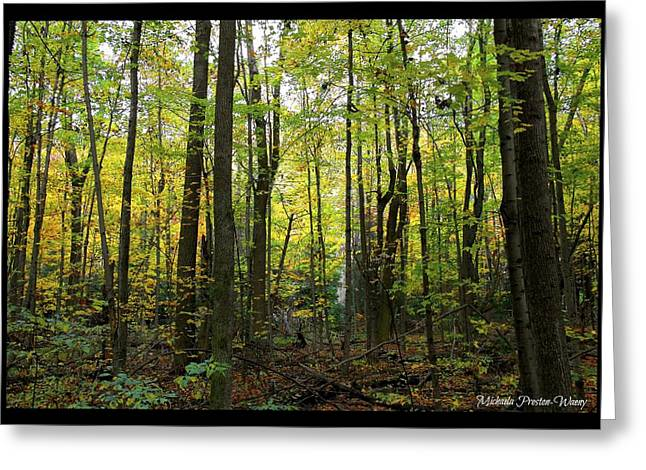 Greeting Card featuring the photograph Yellow Forrest by Michaela Preston