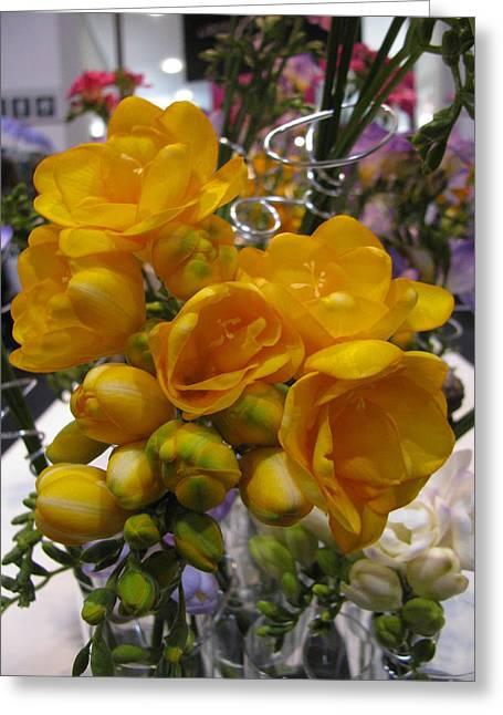 Yellow Freesia Greeting Card by Alfred Ng
