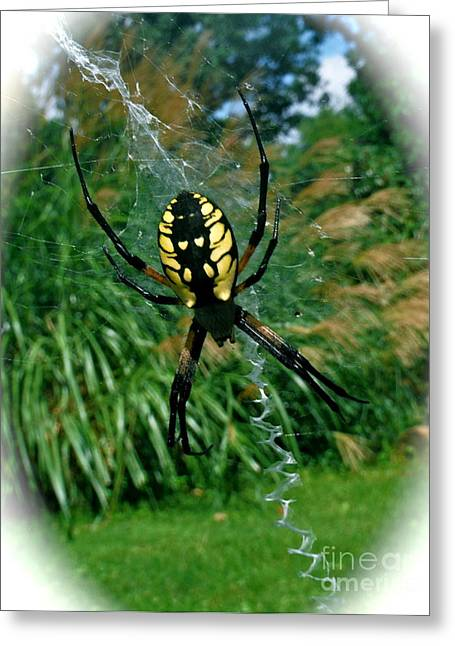 Yellow Garden Spider Greeting Card by Linda Walker