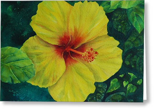 Yellow Hibiscus Greeting Card by Donna Pierce-Clark