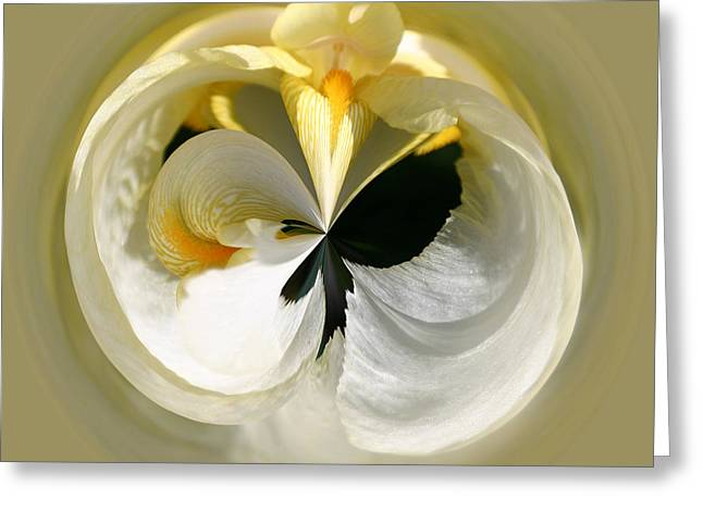 Yellow Iris 101 Greeting Card
