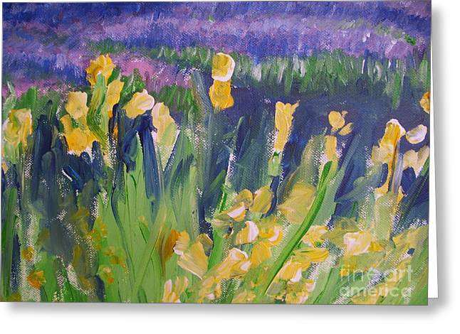 Yellow Iris Greeting Card by Eric  Schiabor