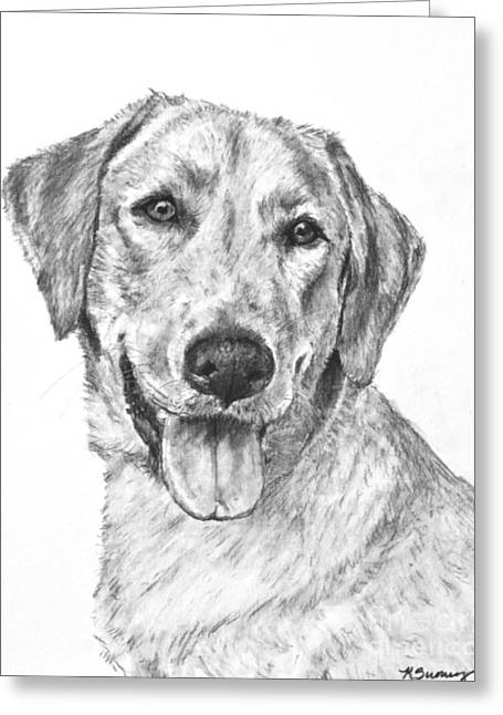 Yellow Lab Head And Shoulders Greeting Card