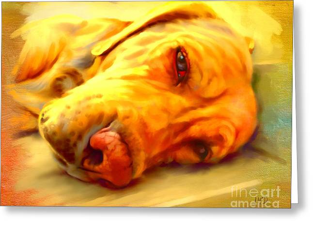 Yellow Labrador Portrait Greeting Card by Iain McDonald