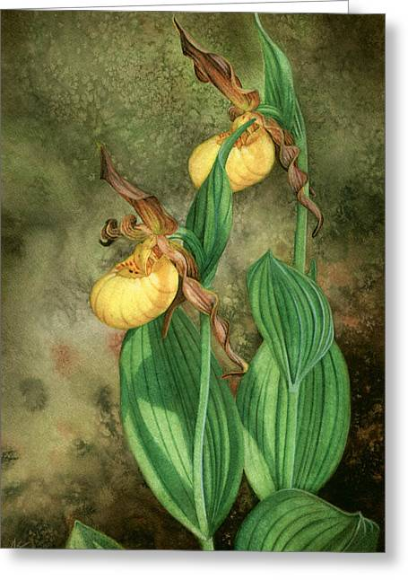 Yellow Lady's Slippers Greeting Card