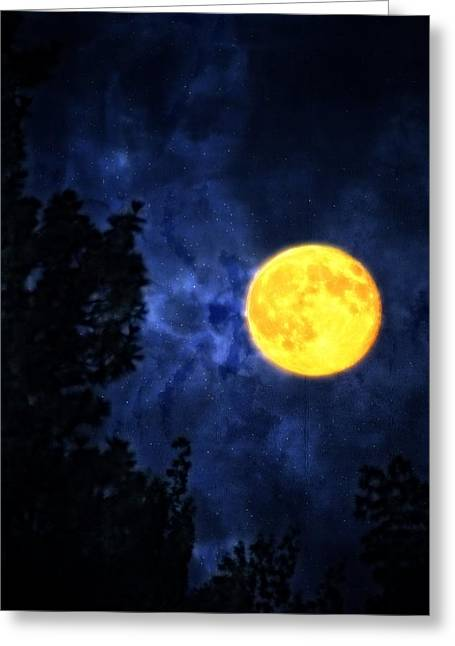 Yellow Moon Greeting Card by Dan Quam