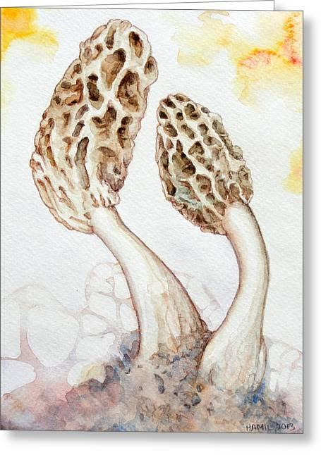 Yellow Morel Mushrooms Greeting Card by Alison Hamil